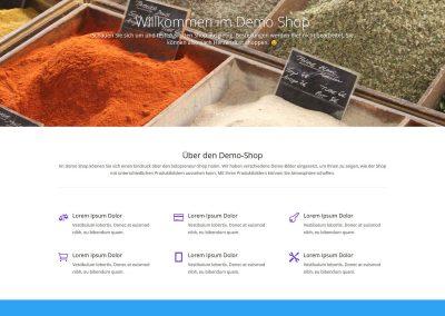 Solopreneur-Shop Startseite
