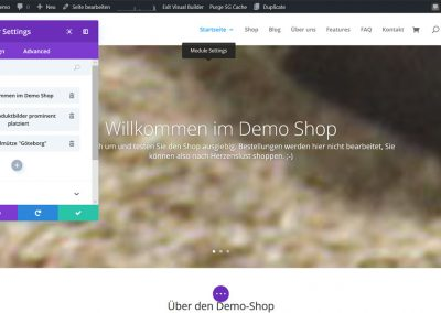Solopreneur-Shop Pagebuilder