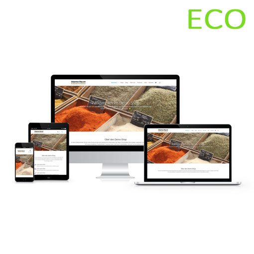 Solopreneur-Shop Eco